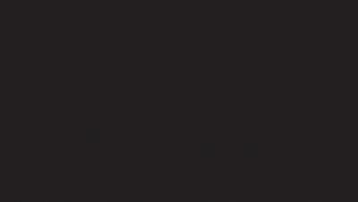 De Vries Logo